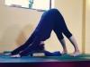 Yogawest-BobbyClennell2015_021